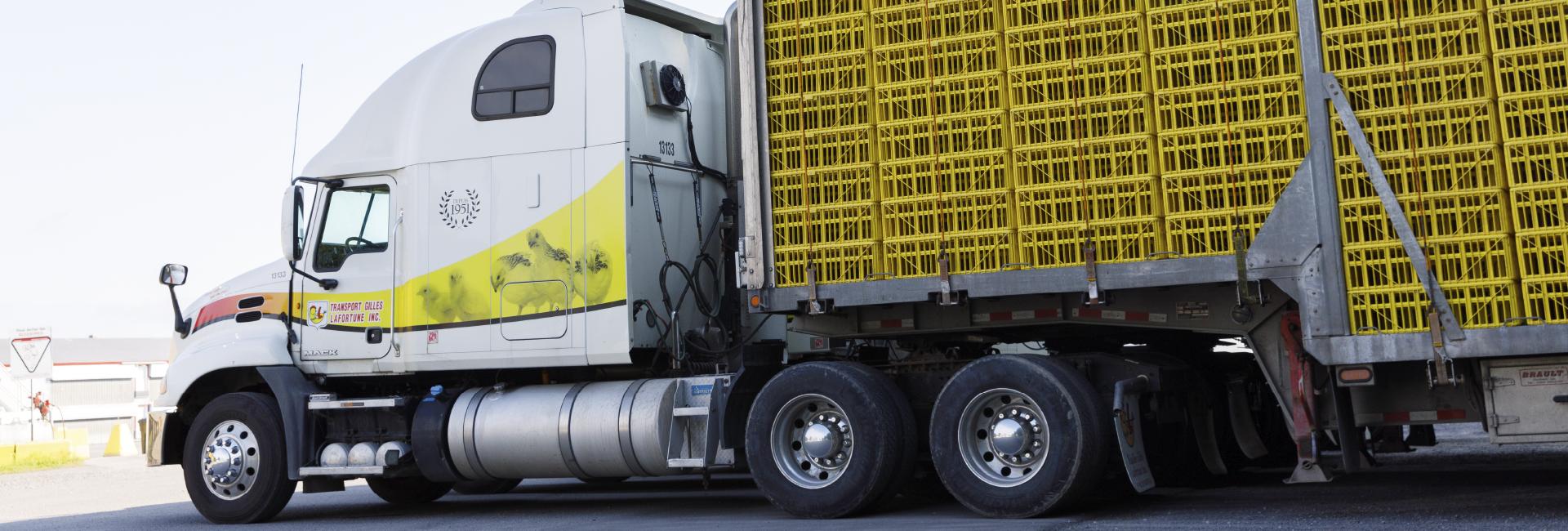 Volailles-transport-gilles-lafortune-services-header